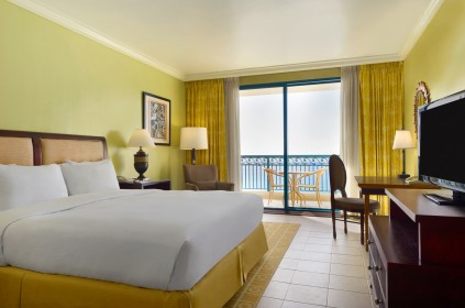 Executive Room with king bed